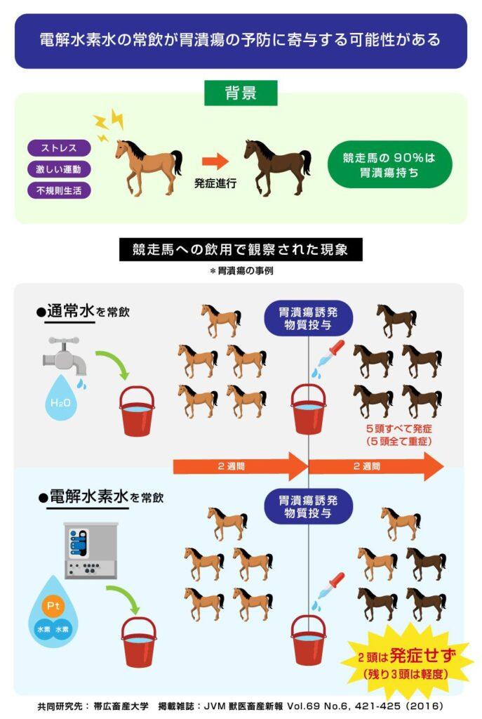 馬の非ステロイド系抗炎症薬誘発胃潰瘍に対する電解水素水 飲水の予防効果